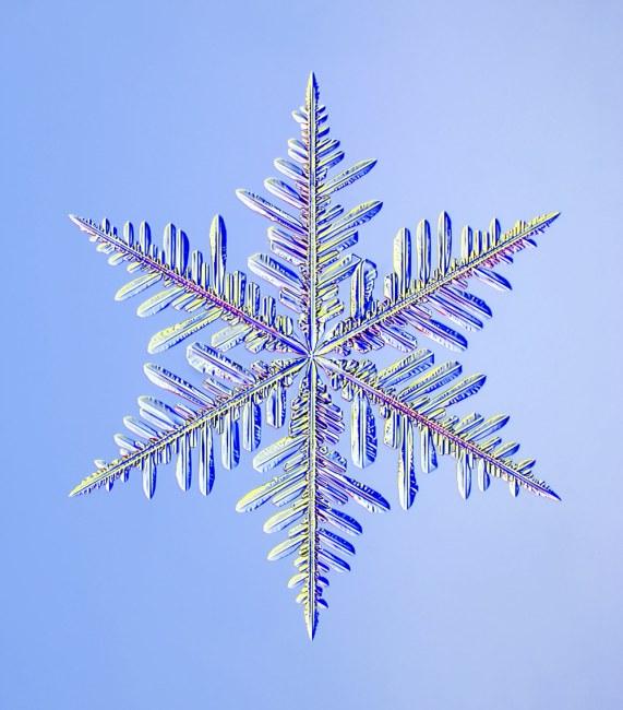 IceCrystalFlakeExtremeCloseUp
