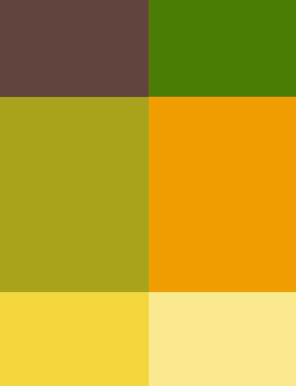 Colorsforlunch1